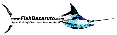 FishBazaruto.com